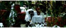 Restaurant La Closerie Des Lilas Traditionnel Paris