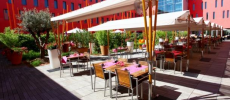 La Vie en Rose (Radisson Blu Hotel Toulouse Airport ****) Traditionnel Blagnac