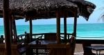 Restaurant Beach Paradise