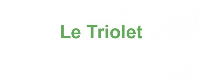 Restaurant Le Triolet - Chasseneuil-du-Poitou