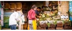L'Écume Saint-Honoré Poissons et fruits de mer Paris