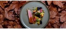 Reflet d'Obione Gastronomique Montpellier